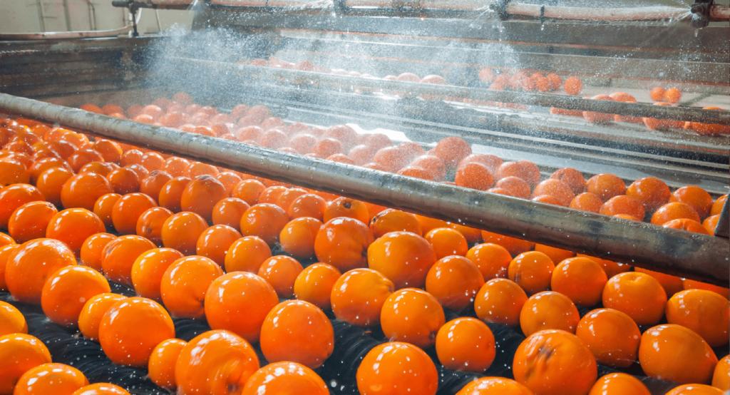 Wie digitalisieren Lebensmittelhersteller ihr Schulungsmanagement?