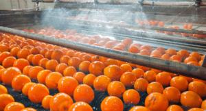 Read more about the article Wie digitalisieren Lebensmittelhersteller ihr Schulungsmanagement?